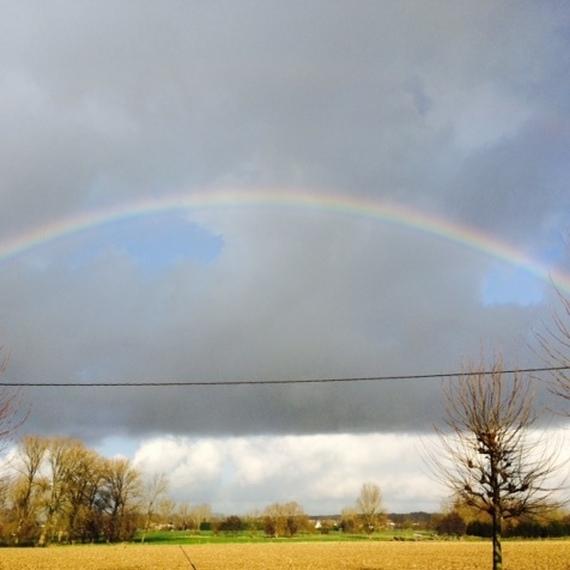 Een regenboog tegen kanker